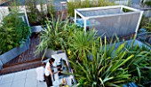 CONTEMPORARY FORMAL ROOF TERRACE/ GARDEN DESIGNED BY DATA NATURE ASSOCIATES: VIEW OVER GARDEN WITH DECKING  PHORMIUMS  PERGOLA AND JACUZZI