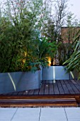 CONTEMPORARY FORMAL ROOF TERRACE/ GARDEN DESIGNED BY DATA NATURE ASSOCIATES: DECKED TERRACE AND RAISED METAL BEDS PLANTED WITH BAMBOOS AND MELIANTHUS MAJOR