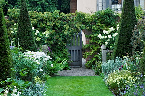 WOLLERTON_OLD_HALL_SHROPSHIREVIEW_FROM_THE_YEW_WALK_TOWARD_GATE_WITH_HYDRANGEA_PANICULATA_UNIQUE_IN_