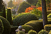 PROVENCE  FRANCE: GARDEN OF NICOLE DE VESIAN  LA LOUVE: CLIPPED TOPIARY SHAPES AT DAWN WITH STAGS HORN SUMACH (RHUS TYPHINA) IN BACKGROUND