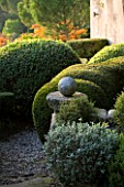 PROVENCE  FRANCE: GARDEN OF NICOLE DE VESIAN  LA LOUVE: GRAVEL TERRACE AND CLIPPED TOPIARY SHAPES AT DAWN WITH STAGS HORN SUMACH (RHUS TYPHINA) IN BACKGROUND