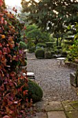PROVENCE  FRANCE: GARDEN OF NICOLE DE VESIAN  LA LOUVE: VIEW FROM HOUSE DOOR TO GRAVEL TERRACE WITH METAL TABLE AND CHAIRS  BOSTON IVY AND CLIPPED TOPIARY SHAPES