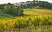 PROVENCE  FRANCE: DOMAINE DE LA VERRIERE: THE PROPERTY VIEWED FROM THE VINEYARDS