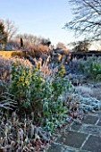 WOLLERTON OLD HALL  SHROPSHIRE: WINTER GARDEN IN FROST -  VIEW ACROSS LANHYDROCK GARDEN AT DAWN WITH ROSES AND AN URN IN B ACKGROUND