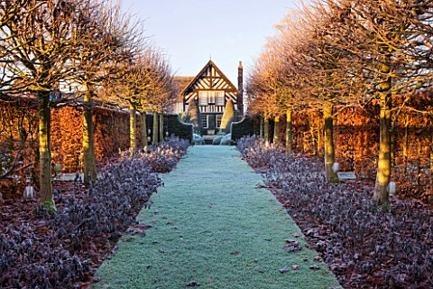 WOLLERTON_OLD_HALL__SHROPSHIRE_WINTER_GARDEN_IN_FROST___VIEW_ALONG_THE_LIME_ALLEE_TO_THE_HOUSE_AT_DA
