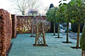WOLLERTON OLD HALL  SHROPSHIRE: WINTER GARDEN IN FROST -  BEAUTIFUL OAK TRIPOD FOR CLIMBING PLANTS AND STANDARD PORTUGUESE LAURELS IN THE OLD GARDEN. DAWN LIGHT
