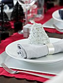 CHRISTMAS TABLE SETTING - NAPKIN AND SILVER DECORATION ON A WHITE PLATE. SARAH EASTEL LOCATIONS/ DI ABLEWHITE