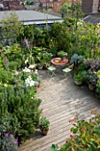 ROSE GRAY AND SCULPTOR DAVID MACILWAINE: VIEW DOWN ONTO THE DECKED ROOF TERRACE/ ROOF GARDEN WITH PLANTS IN CONTAINERS - ROSEMARY  TULIP WHITE TRIUMPHATOR : TABLE AND GREEN CHAIRS