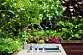 CHELSEA FLOWER SHOW 2009:  FRESHLY PREPPED GARDEN BY ARALIA. STONE SINK AREA IN OUTDOOR KITCHEN SURROUNDED BY EDIBLE LIVING WALL PLANTED WITH BABY SALAD LEAVES