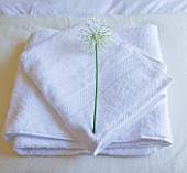 DESIGNER: CLAIRE SKINNER  ROU ESTATE  CORFU: HOUSE INTERIOR - BEDROOM WITH FOLDED TOWELS AND ALLIUM