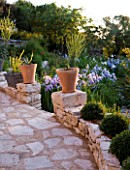 THE ROU ESTATE  CORFU: PATH WITH GATE  TERRACOTTA CONTAINERS PLANTED WITH AGAVES AND IRISES IN MORNING LIGHT