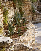 THE ROU ESTATE  CORFU: ROCK FACE BESIDE THE POOL WITH AGAVES