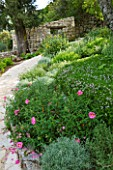 THE ROU ESTATE  CORFU: DRY PLANTING - CLIPPED SANTOLINA  THYME  PHLOMIS FRUTICOSA AND CISTUS IN RAISED BORDER EDGED WITH STONE - DROUGHT-TOLERANT