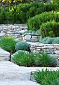 THE ROU ESTATE  CORFU: TIERED STONE TERRACE WITH PROSTRATE ROSEMARY AND CLIPPED SANTOLINA