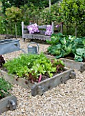 DESIGNER: CLARE MATTHEWS - ORGANIC VEGETABLE GARDEN/ POTAGER PROJECT  DEVON: VIEW OF THE POTAGER/ VEGETABLE GARDEN IN JUNE WITH WOODEN BENCH  CUSHIONS   RAISED BEDS  GRAVEL