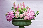 PAULA PRYKES HOUSE  SUFFOLK: OUTDOOR FLORAL ARRANGEMENT OF PINK LUPINS AND HYDRANGEAS IN GREEN URN/CONTAINER