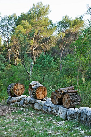 JACQUELINE_MORABITO__FRANCE__HUGE_LOGS_PILED_ON_STONE_WALL_TO_MAKE_A_SCULPTURE