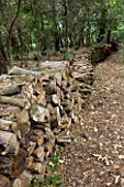 JACQUELINE MORABITO  FRANCE - HUGE LOGS PILED TOGETHER TO MAKE A WALL IN THE WOODLAND