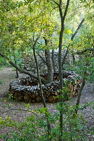 JACQUELINE_MORABITO__FRANCE__LOG_CIRCLE_IN_THE_WOODLAND