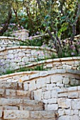 CORFU  GREECE: DESIGNER: DOMINIC SKINNER - MEDITTERANEAN STYLE GARDEN  - STONE STEPS AND WALL WITH TULBAGHIA VIOLACEA AND OLIVES