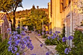 THE ROU ESTATE  CORFU  GREECE: DESIGNER: DOMINIC SKINNER - MEDITTERANEAN STYLE GARDEN - GRAVEL PATH AND AGAPANTHUS AT WITH PERGOLA AND WELL IN BACKGROUND