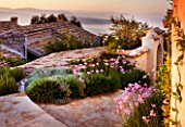THE ROU ESTATE  CORFU  GREECE: DESIGNER: DOMINIC SKINNER - MEDITTERANEAN STYLE GARDEN - PATH THROUGH VILLAGE WITH TULBAGHIA VIOLACEA AND MOUNTAINS OF ALBANIA IN THE BACKGROUND