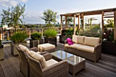DESIGNER: CHARLOTTE ROWE  LONDON: ROOF GARDEN - A PLACE TO SIT - WICKER FURNITURE AND WOODEN PERGOLA WITH CONTAINERS PLANTED WITH OLIVE TREES  PENNISETUM HAMELYN AND  PINUS MUGO, DECKS, DECKING, SCREENING