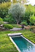 DESIGNER: JEAN-LAURENT FELIZIA  FRANCE: LAWN WITH SWIMMING POOL