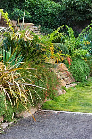 DESIGNER_JEANLAURENT_FELIZIA__FRANCE_WALL_PLANTED_WITH_PHORMIUMS_BESIDE_PATH
