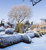 PETTIFERS  OXFORDSHIRE: GARDEN IN SNOW IN WINTER - VIEW TOWARDS THE PARTERRE WITH CLIPPED TOPIARY SHAPES
