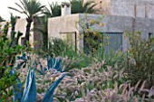 DESIGNERS ERIC OSSART AND ARNAUD MAURIERES  MOROCCO: DAR IGDAD - DRY GARDEN WITH BORDER OF PENNISETUM SETACEUM AND AGAVES