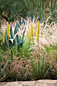 DESIGNERS ERIC OSSART AND ARNAUD MAURIERES  MOROCCO: DAR IGDAD - DRY GARDEN WITH BORDER OF PENNISETUM SETACEUM  AGAVES AND ALOE VERA