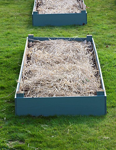 DESIGNER_CLARE_MATTHEWS_FRUIT_GARDEN_PROJECT__DEEP_MULCHED_RAISED_BED__HAY_ADDED_TO_SOIL