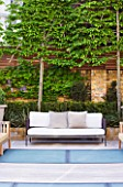 MODERN ROOF GARDEN BY STEPHEN WOODHAMS, LONDON: WOODEN BENCH/SEAT. DECK AND FROSTED GLASS SKYLIGHTS TO POOL BELOW. PLEACHED HORNBEAMS. CONTEMPORARY, DECKS, DECKING, DECKED