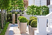 ROOF GARDEN DESIGNED BY STEPHEN WOODHAMS  LONDON: FRONT, GARDEN, GRAVEL, TERRACE, CERAMIC, CONTAINERS, CLIPPED, TOPIARY, BOX, BUXUS, HEDGE, HEDGING, PLEACHED