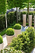 ROOF GARDEN DESIGNED BY STEPHEN WOODHAMS  LONDON: FRONT, GARDEN, GRAVEL, TERRACE, CERAMIC, CONTAINERS, CLIPPED, TOPIARY, BOX, BUXUS, HEDGE, HEDGING, PLEACHED, YEW, TAXUS