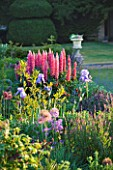 NARBOROUGH HALL GARDENS  NORFOLK: THE PASTEL BORDER WITH ALLIUMS  IRIS AND LUPINS