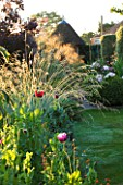 SANDHILL FARM HOUSE  HAMPSHIRE - DESIGNER ROSEMARY ALEXANDER: BACKLIGHTING ON BORDER WITH STIPA GIGANTEA AND ANNUAL POPPIES  SUMMER HOUSE IN THE BACKGROUND