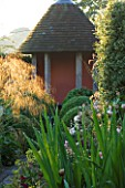 SANDHILL FARM HOUSE  HAMPSHIRE - DESIGNER ROSEMARY ALEXANDER: BACKLIGHTING ON STIPA GIGANTEA AND BOX BALLS WITH SUMMERHOUSE IN BACKGROUND