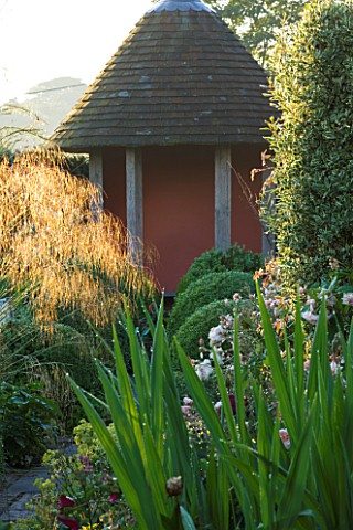 SANDHILL_FARM_HOUSE__HAMPSHIRE__DESIGNER_ROSEMARY_ALEXANDER_BACKLIGHTING_ON_STIPA_GIGANTEA_AND_BOX_B