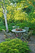 SANDHILL FARM HOUSE  HAMPSHIRE - DESIGNER ROSEMARY ALEXANDER: THE FRONT GARDEN - TABLE AND CHAIRS WITH BIRCH TREE