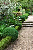 SANDHILL FARM HOUSE  HAMPSHIRE - DESIGNER ROSEMARY ALEXANDER: THE FRONT GARDEN - GRAVEL PATH WITH BOX BALLS AND LOW BOX HEDGING