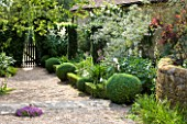 SANDHILL FARM HOUSE  HAMPSHIRE - DESIGNER ROSEMARY ALEXANDER: THE FRONT GARDEN - GRAVEL PATH - BOX BALLS  LOW BOX HEDGING  AND YEW- TAXUS BACCATA FASTIGIATA - LEADING TO  GATE