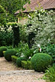 SANDHILL FARM HOUSE  HAMPSHIRE - DESIGNER ROSEMARY ALEXANDER: THE FRONT GARDEN - GRAVEL PATH - BOX BALLS  LOW BOX HEDGING  AND YEW- TAXUS BACCATA FASTIGIATA