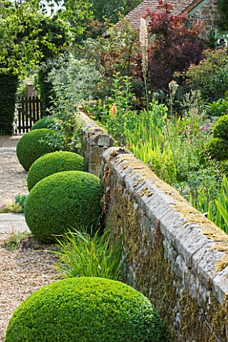 SANDHILL_FARM_HOUSE__HAMPSHIRE__DESIGNER_ROSEMARY_ALEXANDER_THE_FRONT_GARDEN__GRAVEL_PATH_AND_BOX_BA