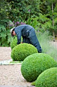 SANDHILL FARM HOUSE  HAMPSHIRE - DESIGNER ROSEMARY ALEXANDER - GARDENER WITH HAT CLIPPING BOX BALLS IN THE FRONT GARDEN