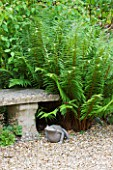 SANDHILL FARM HOUSE  HAMPSHIRE - DESIGNER ROSEMARY ALEXANDER - STONE SEAT AND METAL FROG SURROUNDED BY FERNS IN THE FRONT GARDEN