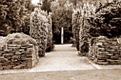 RHS GARDEN  ROSEMOOR  DEVON: BLACK AND WHITE TONED IMAGE OF THE FOLIAGE GARDEN