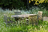 DESIGNER ALISON HENRY - PRIVATE GARDEN, COTSWOLDS: MEADOW WITH OXE EYE DAISIES AND WOODEN TABLE AND CHAIRS. CLASSIC, ENGLISH, GARDEN, DINING, ENTERTAINING, FOOD