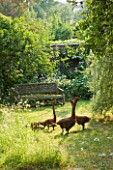 DESIGNER ALISON HENRY - PRIVATE GARDEN, COTSWOLDS: MEADOW AND GRASS PATH WITH WOODEN BENCH AND WILLOW GEESE SCULPTURE BY RUPERT TILL - ORNAMENT, ENGLISH GARDEN, CLASSIC, COUNTRY